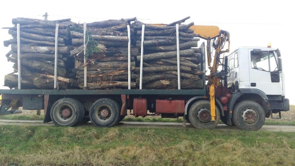 78 forestier dans les yvelines 78 vente de bois de. Black Bedroom Furniture Sets. Home Design Ideas